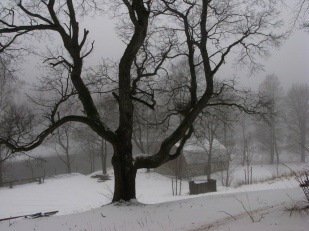 Pohjoisrannalta Mustionjoelle, 2013, K. Lipponen